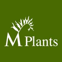 M-PLANTS