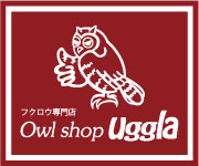 Owl shop uggla